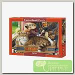 'Castorland' Пазл 500 элемент. Кот в ящике