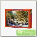 'Castorland' Пазл 2000 элемент. Лесной ручей