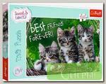 'Trefl' Пазл 260 детские (Дисней) 260 элемент. 'Дружные котята'
