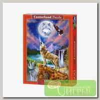 'Castorland' Пазл 1500 элемент. Ночной волк