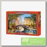 'Castorland' Пазл 1000 элемент. Вечер в Центральном парке