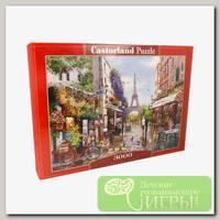 'Castorland' Пазл 3000 элемент. Париж в цветении